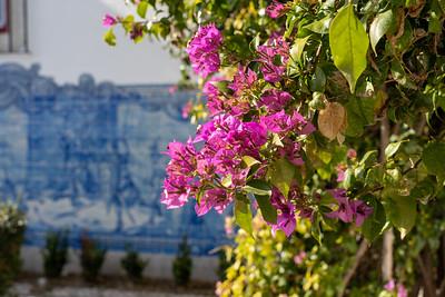 Flowers and tiles at Miradouro de Santa Luzia