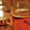 La Budweiser est une bière tchèque