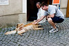 <center>A little to the right...   <br><br>Durnstein, Austria   <br><br>This pup seems to be enjoying the attention.    </center>