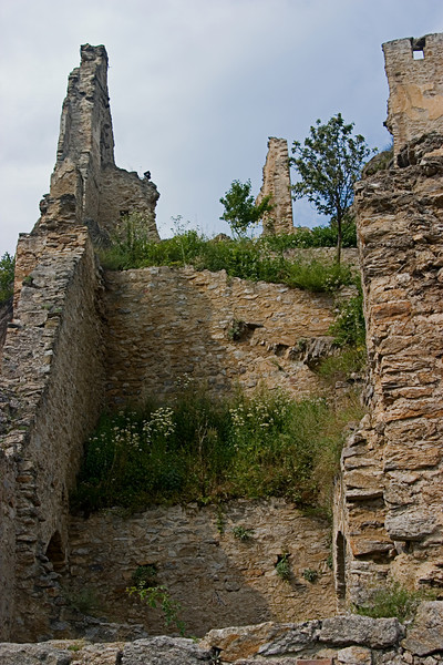 <center>Ruins   <br><br>Durnstein, Austria   <br><br>This castle once was the prison of King Richard the Lionhearted. He was captured on his way back to England after the crusade.    </center>