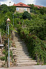 <center>Steep Steps   <br><br>Joching, Austria   <br><br>These steep steps lead to another farmhouse overlooking another vineyard.    </center>