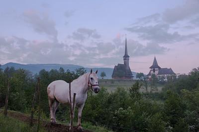 Vama, Bocovina region