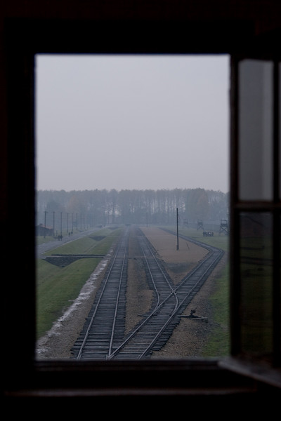 "In the area between these tracks, Nazi ""doctors"" would determine the fate of new arrivals.  Hearty people would become slave labor and all others would be murdered immediately in the gas chambers by the trees in the distance."