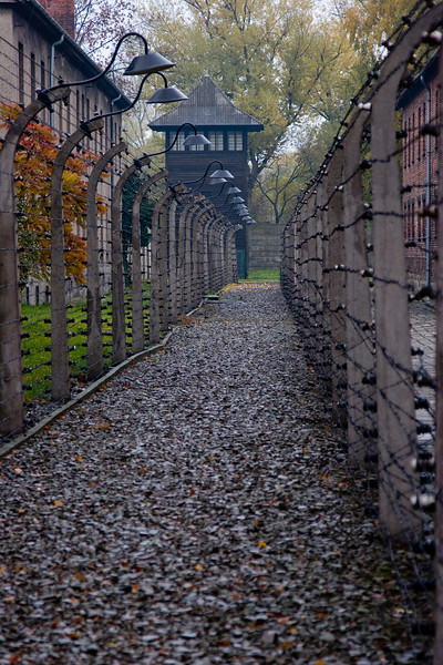 The camp fence in Auschwitz.  Although parts may look like a campus, this reminds you that it's all serious horror.