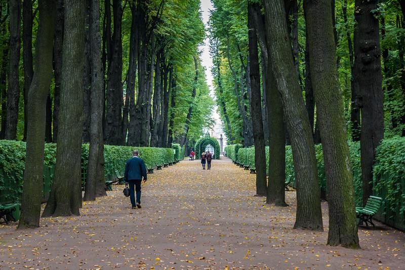 Main pathway, Summer garden