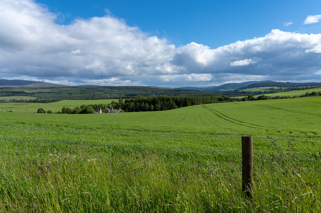 Typical Speyside views