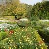 Skye - Dunvegan Castle - Garden