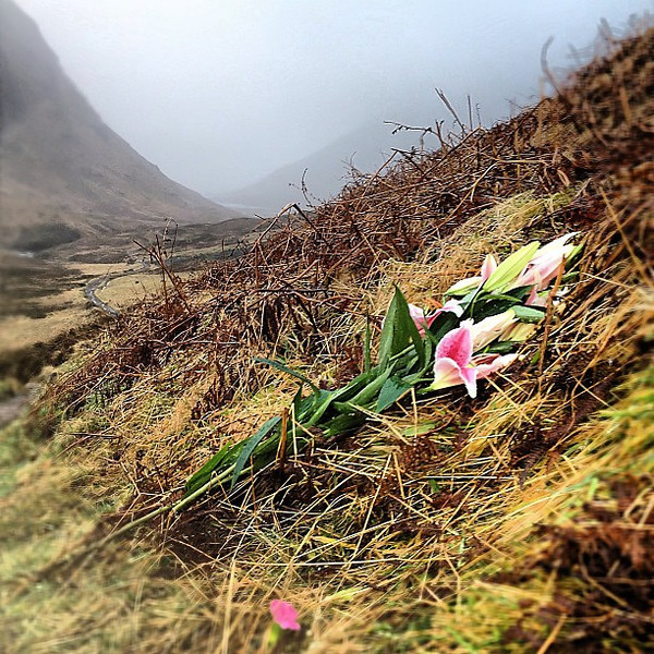 In the shadow of The Three Sisters -- Glencoe, #Scotland. Flowers, perhaps a memorial to Clan MacDonald. #blogmanay