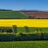 Countryside - Southeastern Scotland