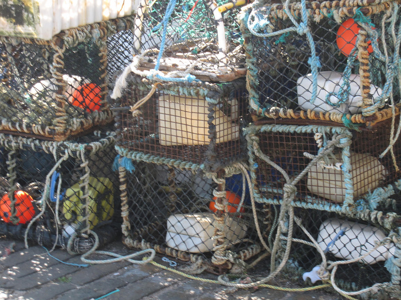 lobster tackle in Crail Harbor