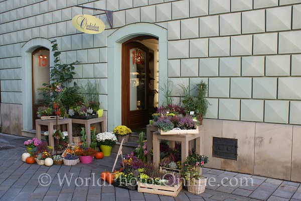 Bratislava - Town Square - Flower Shop