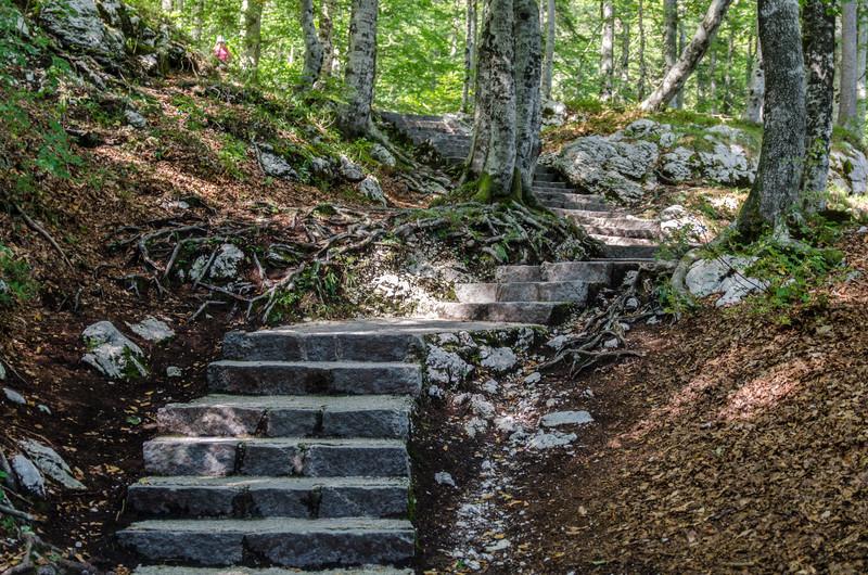 The trail to Slap Savica.
