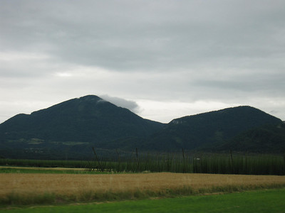 Verdant Slovenian Countryside