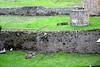 <center>Original Shoreline with Boat Moorings    <br><br>Pompeii, Italy</center>