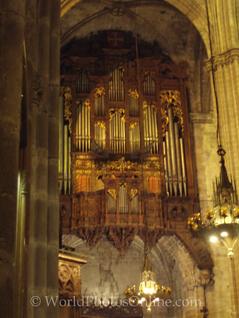 Cathedral - Pipe Organ