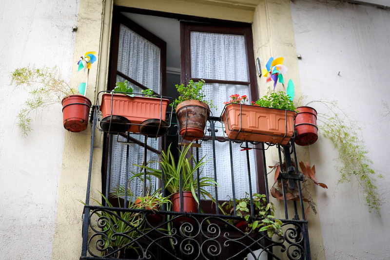 An apartment takes advantage of window space with flower pots and herbs in Barcelona, Spain.
