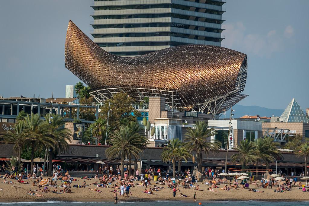 2014_Barcelona-0655