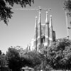 Sagrada Familiar - Barcelona