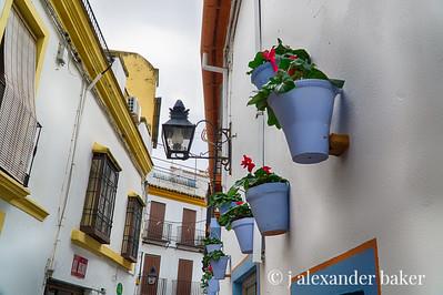 Flower Pots, Cordoba