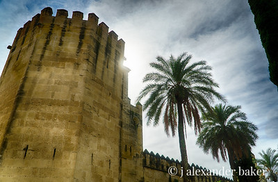 Tower, City wall, Cordoba, Spain
