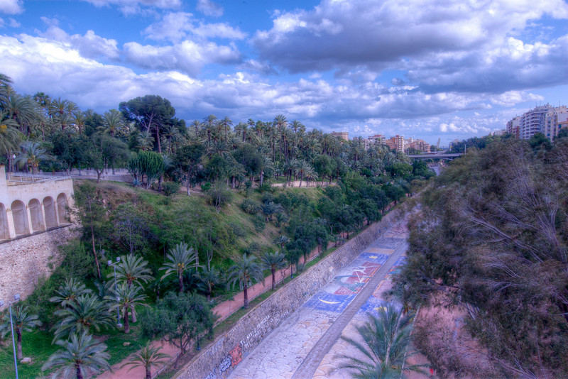 Aerial view of the Palmeral of Elche in Spain