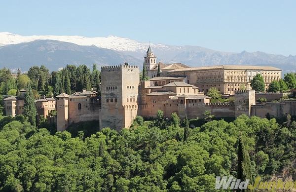 The Alhambra in Granada City