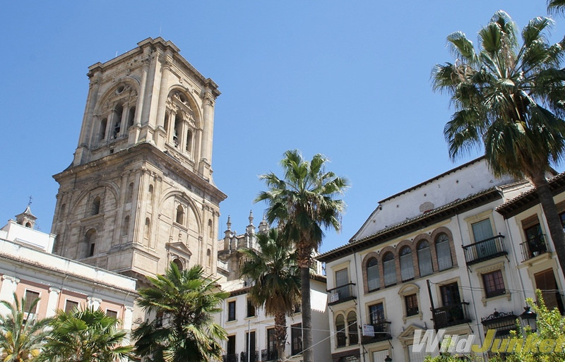 The bell tower of the cathedral