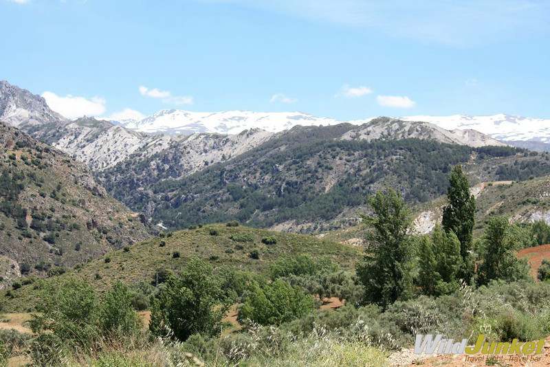 A view of the Sierra Nevada from one of the many hiking trails