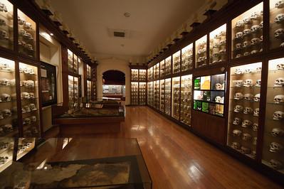 Inside The Canarian Museum in Las Palmas, Gran Canaria, Spain