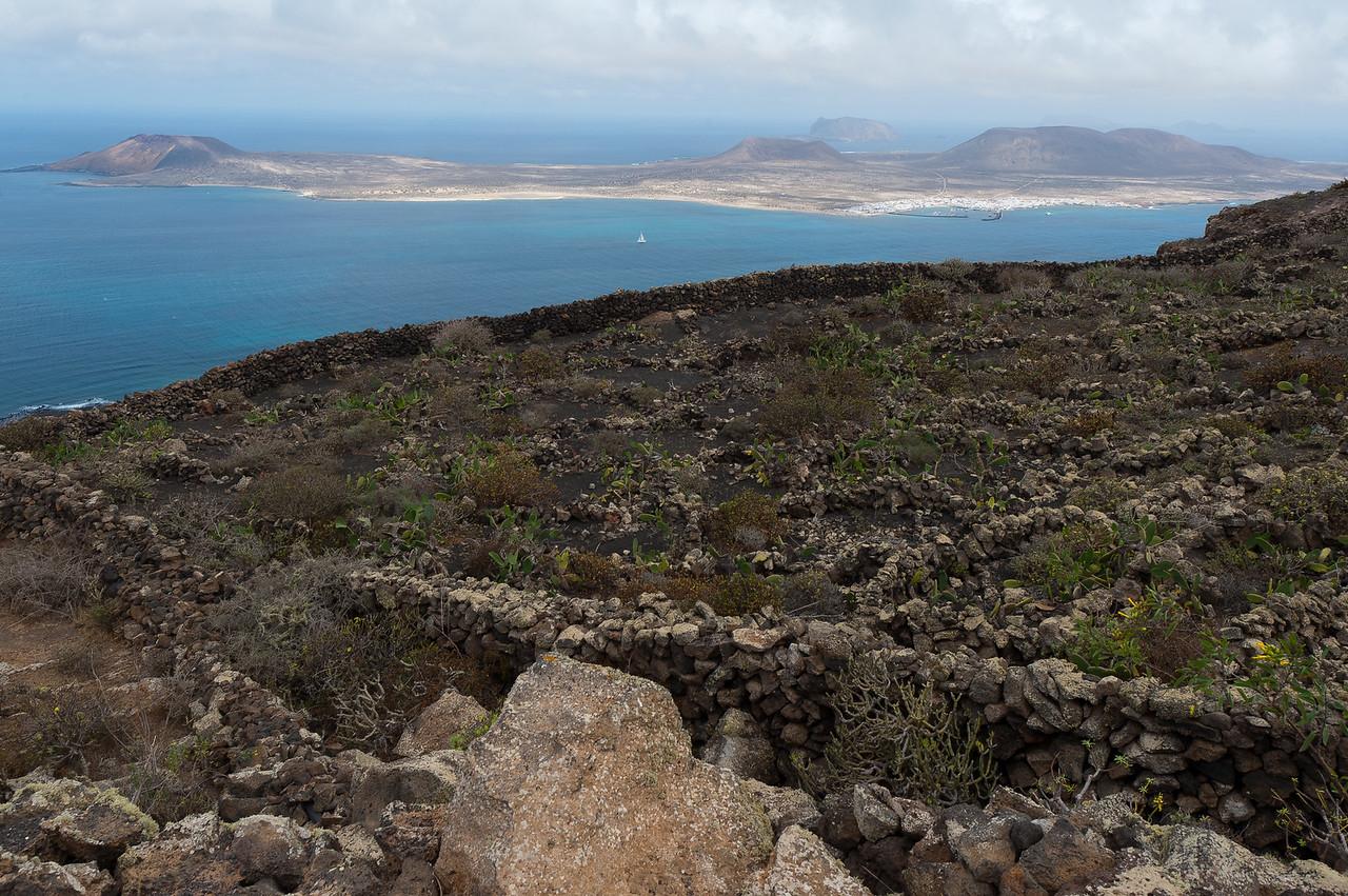 Rocky meadow in the island of Lanzarote in Spain