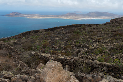 Rocky meadow in the island of Lanzarote in Spain