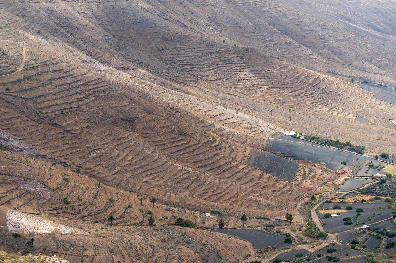 Aerial view of La Geria Valley in Lanzarote Island in Spain