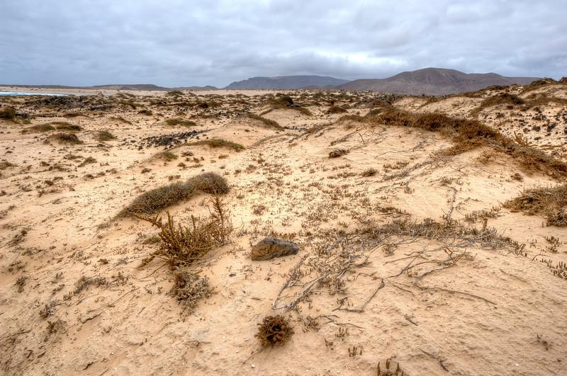The coastline in the island of La Graciosa, Spain