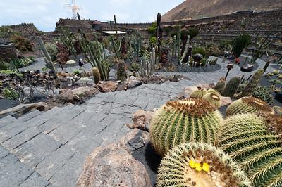 Cactus Garden in Lanzarote Island in Spain
