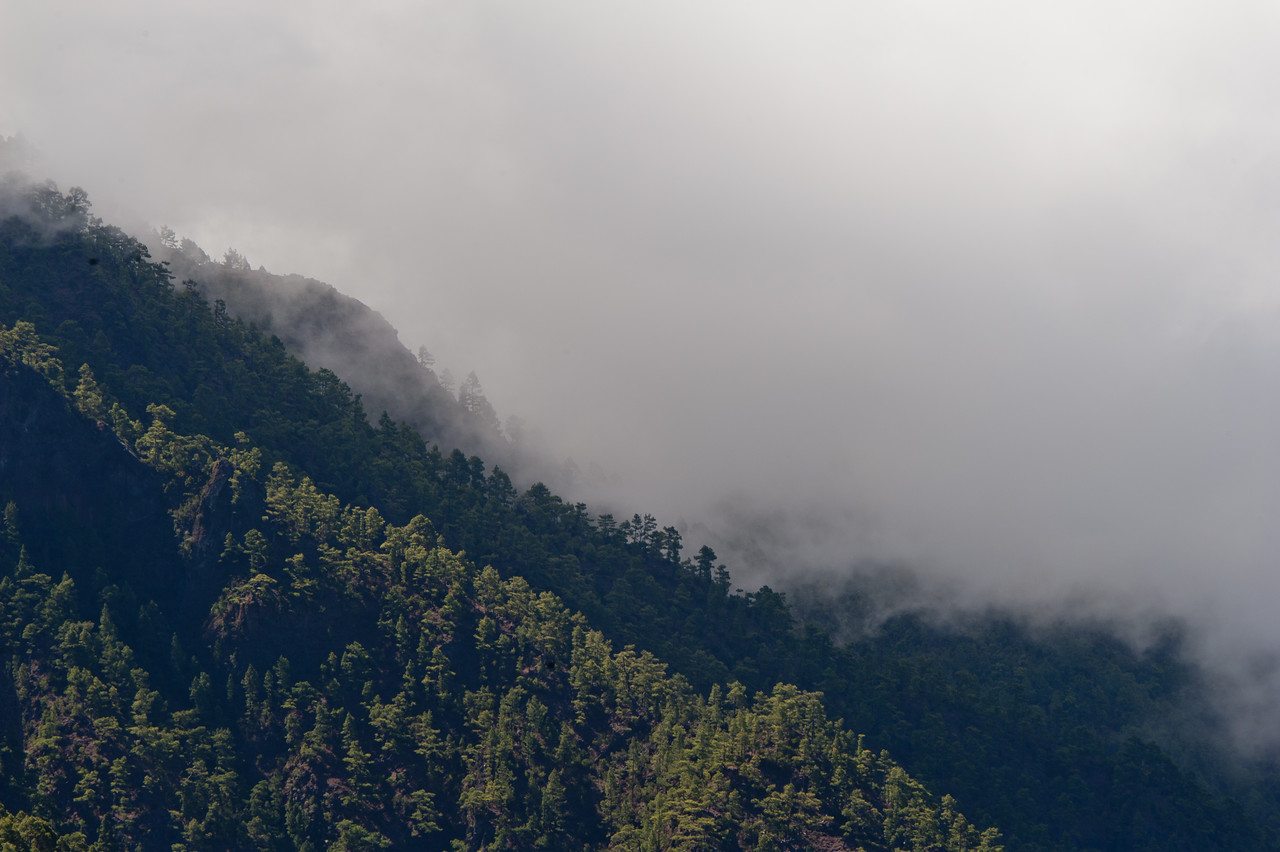 Fog hanging over the mountain in La Palma, Spain