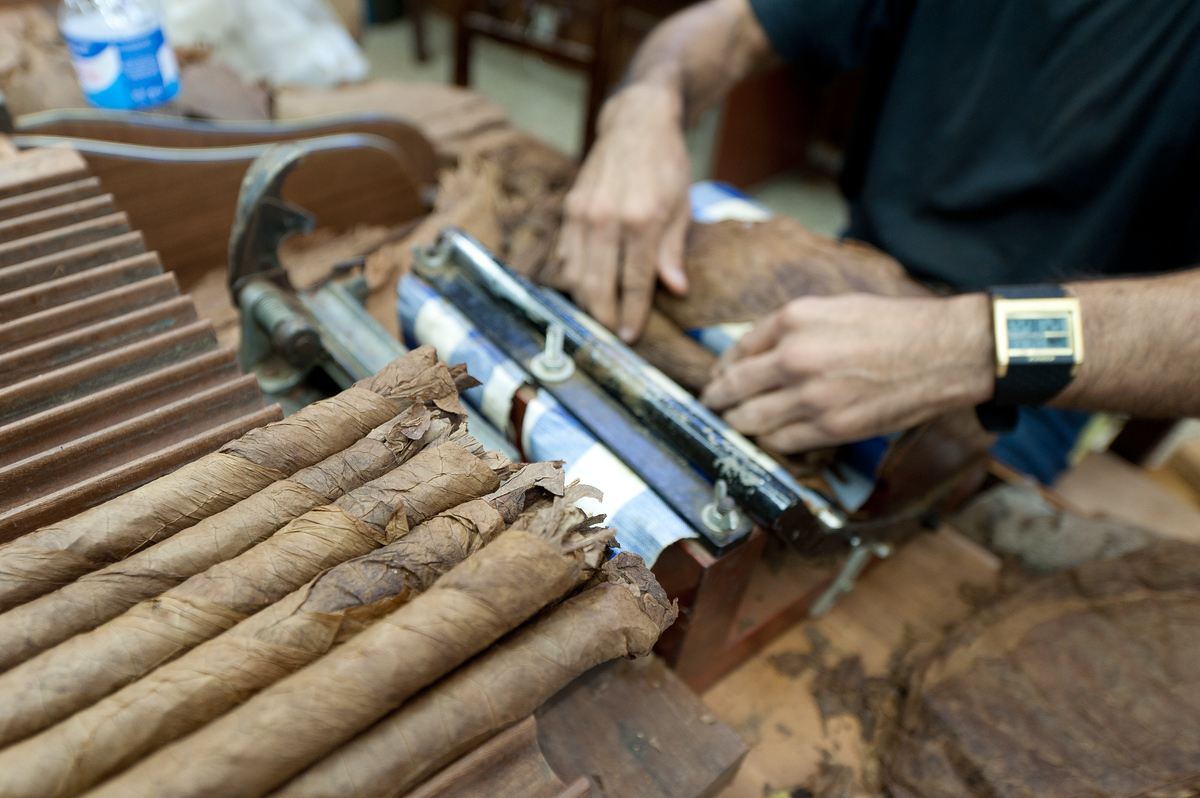 Cigar Rolling on the Island of La Palma, Canary Islands