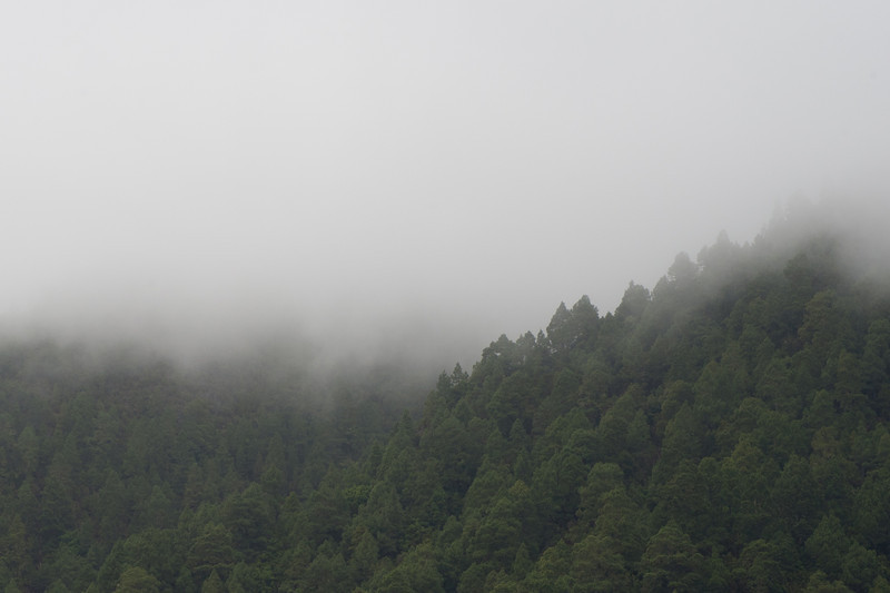 Fog covering the mountain in La Palma, Spain