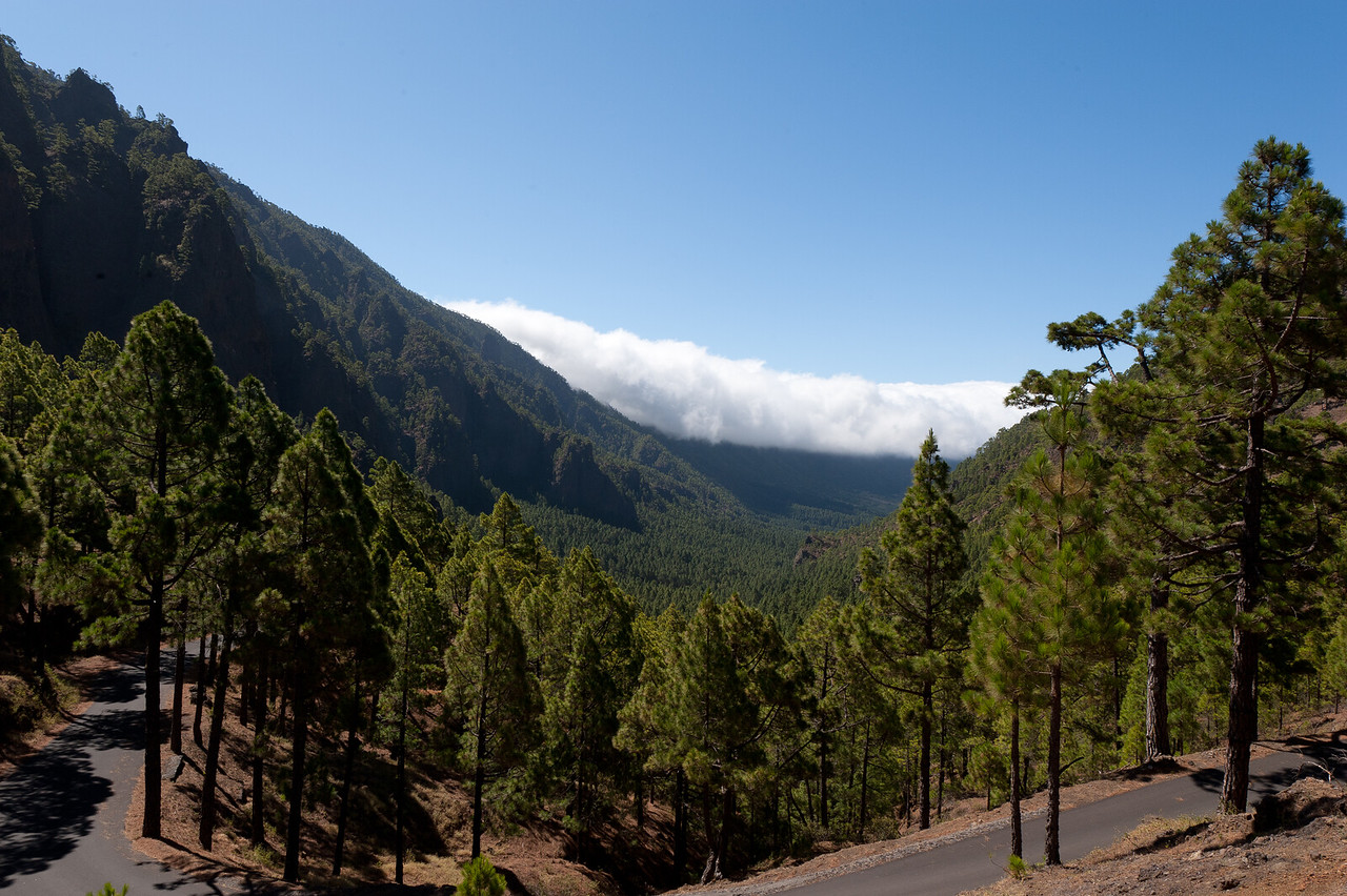 Road leading to Caldera de Taburiente National Park in La Palma, Spain