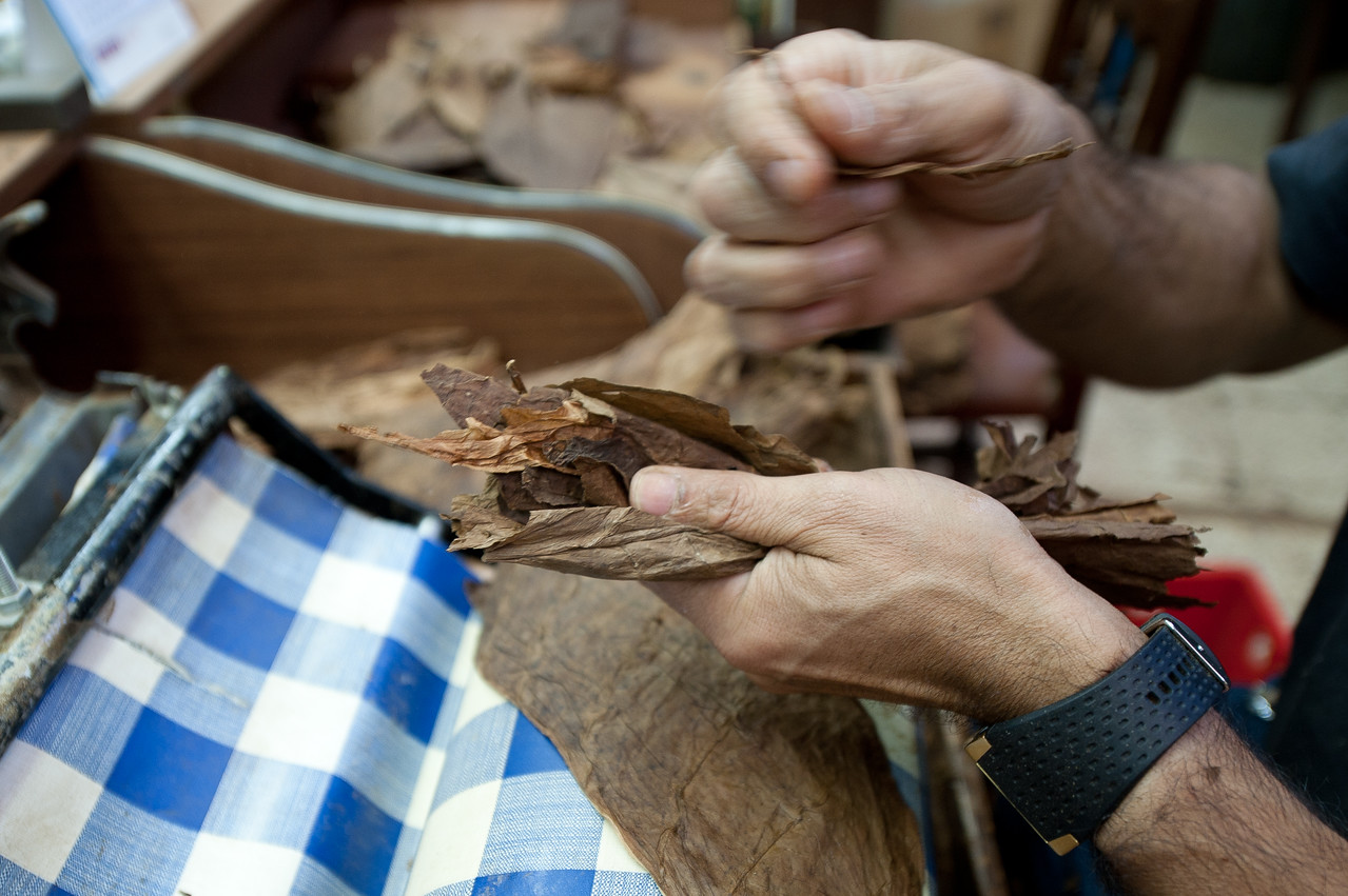 Tobacco made by hand in El Sitio Cigar Factory in La Palma, Spain