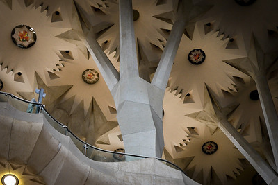 The intricate tree-like support columns in La Sagrada Familia in Barcelona, Spain.
