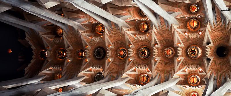 Ceiling of La Sagrada Familia.