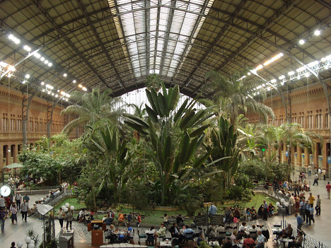 Madrid Atocha Station Indoor Garden