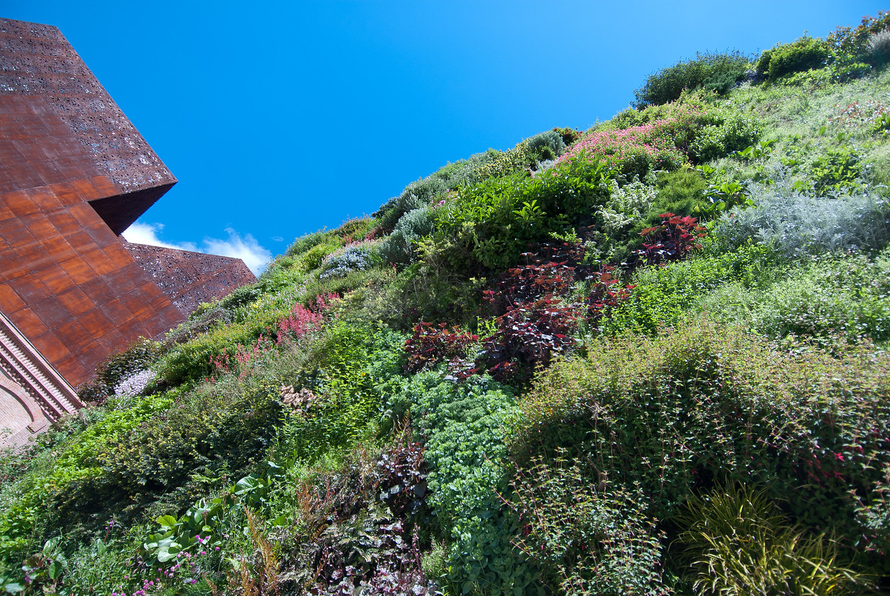 The vertical garden in CaixaForum Madrid in Madrid, Spain