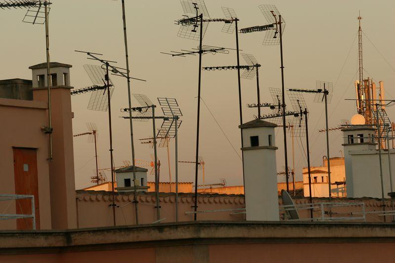 Antenae Majorca