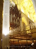 Cathedral - Choir Pipe Organ