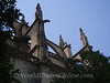 Cathedral - Flying Buttresses