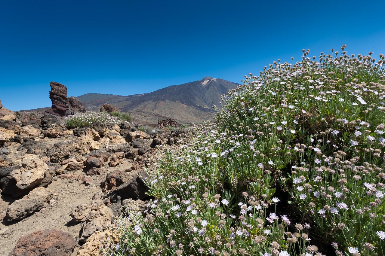Roques de Garcia or rock formation in Mount Teide, Canary Islands, Spain