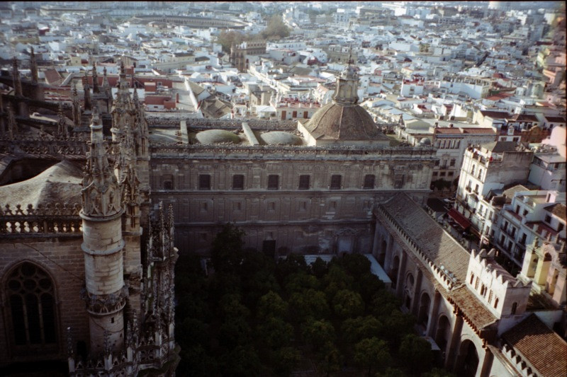 Courtyard of the Cathedral - Sevilla, Spain