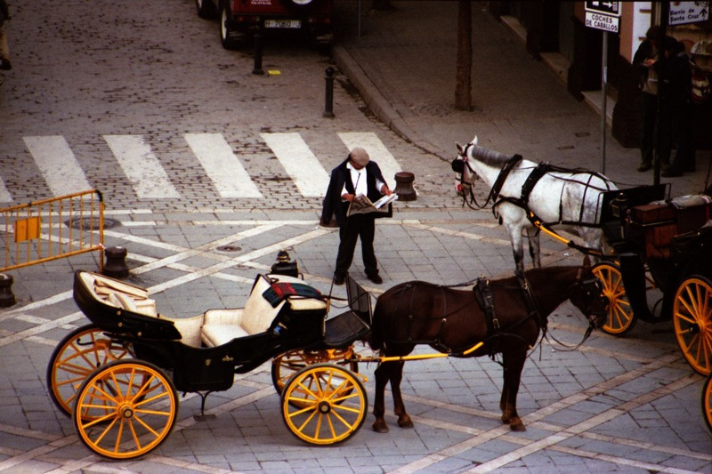 Horse and Buggy - Sevilla, Spain