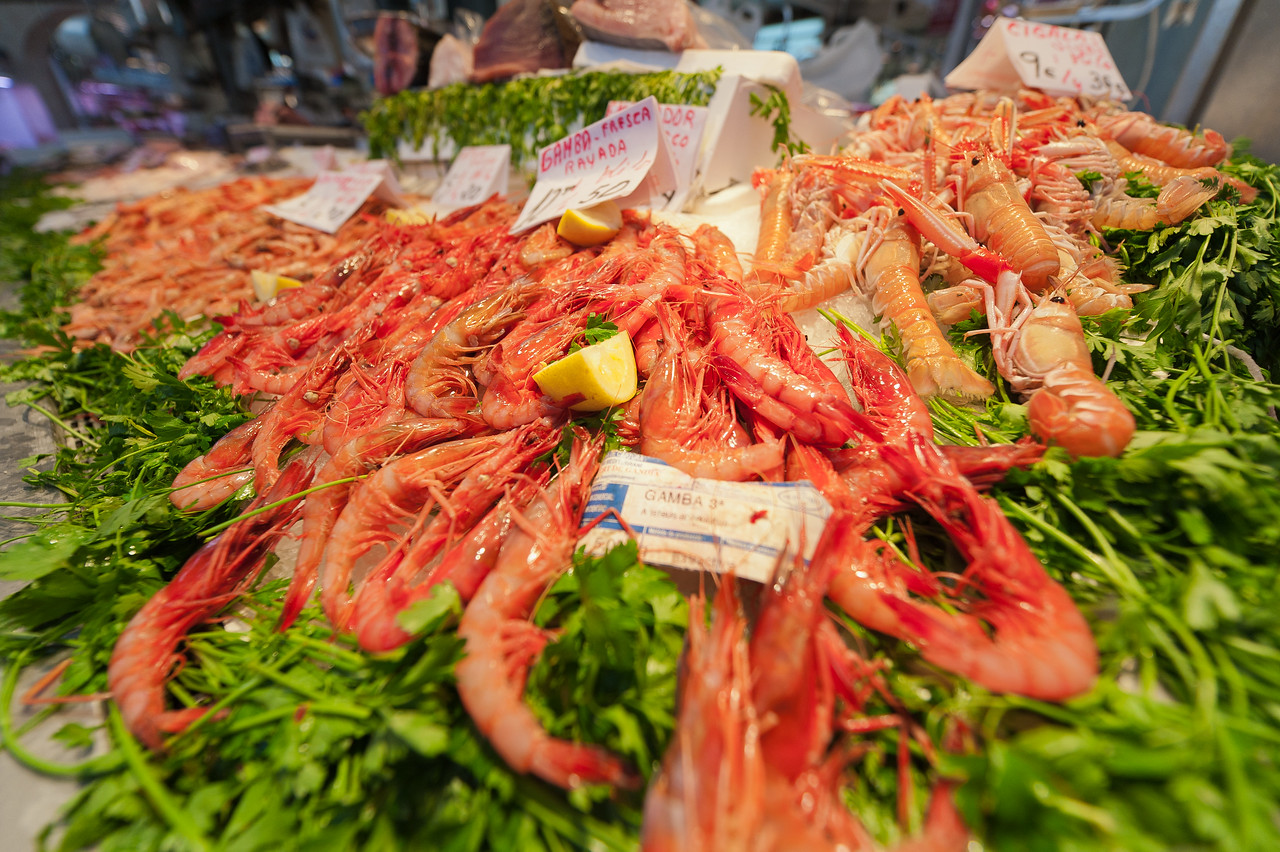 Fresh shrimp sold in Mercado Central, Valencia, Spain